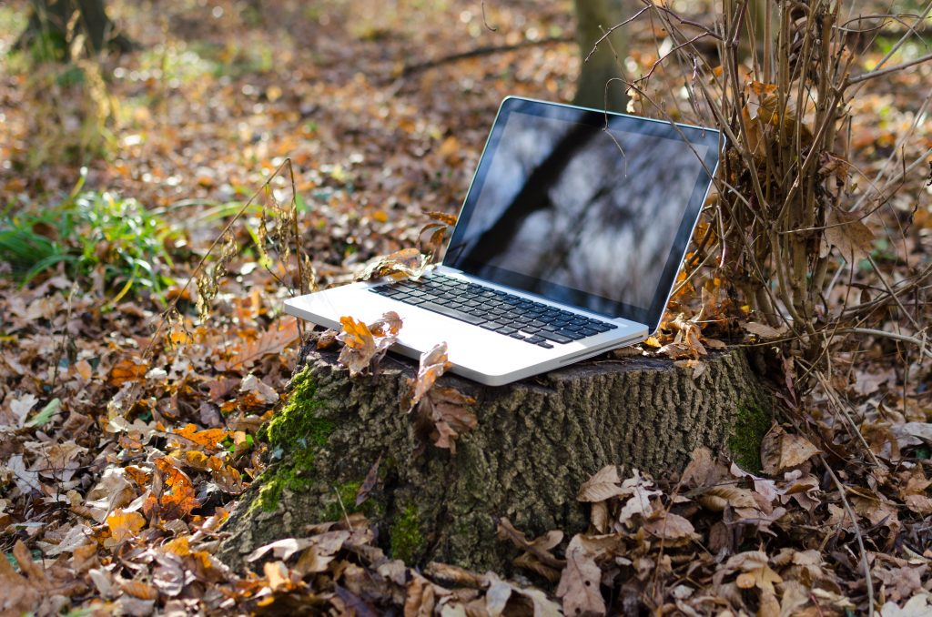 laptop alone in wood to represent internet privacy